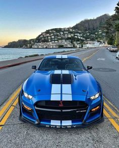 Mustang Old, Ford Mustang Shelby Cobra, Ford Shelby, Mustang Cars, Car Ford, Ford Gt, Nascar, Sports Car Wallpaper, Top Luxury Cars