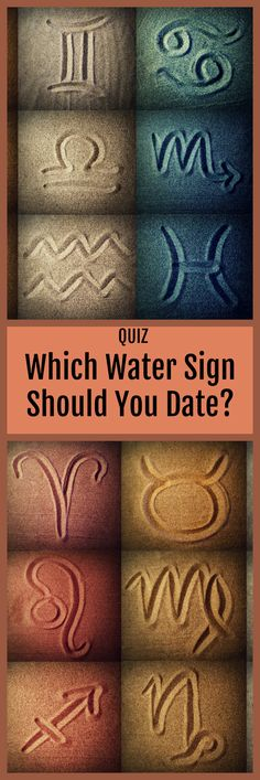 The 12 zodiac signs are categorized into four elemental groups based on distinct traits that they share. These core aspects are what makes one unique while placing them into one of the elemental groups. Zodiac Sign Quiz, Zodiac Signs Astrology, 12 Zodiac Signs, Aquarius Zodiac, Taurus Quotes, Cat Quotes, Zodiac Quotes, Leo And Taurus, Sagittarius Women