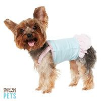 What the best dressed pets are wearing this season