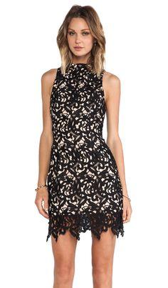 Cameo Fallen Love Dress in Black