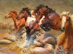 Bonnie Marris has been studying and painting wolves, foxes, dogs and horses since childhood. Contact today to order your custom wildlife or animal art piece. Pretty Horses, Horse Love, Beautiful Horses, Painted Horses, Arte Equina, Horse Artwork, Running Horses, Cowboy Art, Horse Drawings