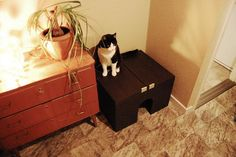 Materials: Lillangen Sink base cabinet with 2 door  Description: This is simple, I bought the Lillangen sink cabinet and put it down on the floor. That's