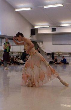 Polina Semionova, Nationaltheater Bayerische Staatsoper Polina Semionova, La Bayadere, Svetlana Zakharova, Grace Beauty, Russian Ballet, Ballet Class, Photo Pin, Modern Dance, Lets Dance