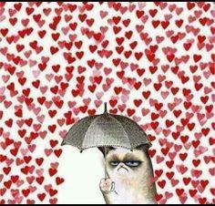 Passend zum Valentinstag ^^