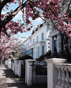 Pink alley in Notting Hill
