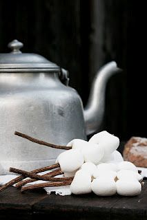 Oh the fun of roasting marshmallows by the fire and drinking warm drinks when it's cold out.