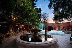 Boojum Tree's Hidden Gardens in Phoenix - Cosey Photography Hidden Garden, Tree Wedding, Photo Tree, Bing Images, Fountain, Wedding Venues, Photo Galleries, Phoenix, Patio