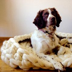 Knitted Dog Bed Luxury Super Chunky Dog by WoolCoutureCompany