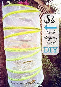 Herb drying rack DIY using dollar store pop-up food covers! Retail cost for this ranges from $32- $120, but you can make it for as low as $6! Cheap and easy way to dry herbs and food!