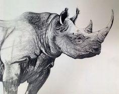 Black rhino                                                                                                                                                                                 Más