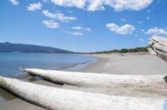 17th april on feniglia shore, close to ansedonia...