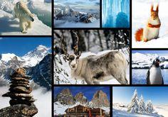 Alkossa meg kreatív fotókönyvét melyet a tél inspirál.  #TinTatu #Fotokonyv #Mozaik #Tel Mosaic, Snow, Outdoor, Ink, Outdoors, Mosaics, Outdoor Games, The Great Outdoors, Eyes