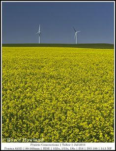 Prairie Generations, Taber by Royce Howland