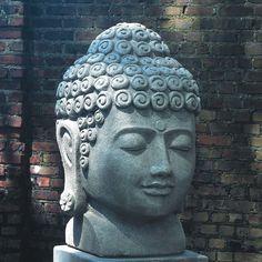 Campania International, Inc Temple Buddha Head Statue Color: Ferro Rustico Buddha Buddhism, Buddha Meditation, Gnome Statues, Garden Statues, Buddha Statues, Glasgow, Temple Gardens, Zen Gardens, Virgin Mary Statue