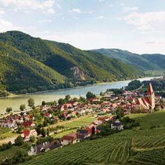 Loiben in der Wachau #Wachau #Danube #Donau #Österreich Austria #nature
