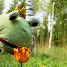 """Sammakko ja tulppaani ©katiruotsalainen: """"Samppi Sammakko the Frog ja oranssi tulpaani. Kukkapenkki alkaa taas kukkia!"""""""