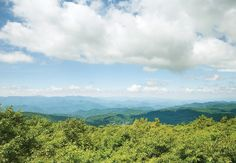 Georgia's landscape has everything from the rugged Appalachians to granite monadnocks and shady creekside trails. We whittled it down to 12 great hikes, fit for an experienced backpacker, day-tripper, or even an urban crusader (two are ITP!).