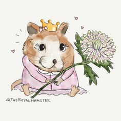 Meet The Royal Hamster, HRH Marvin, The Adorable Fashion Dish ... see more at PetsLady.com ... The FUN site for Animal Lovers