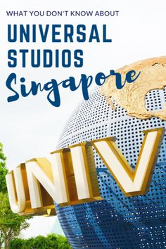 Didnt know there was a Universal Studios park in Singapore?: What you NEED to know about Universal Studios Singapore before your visit to USS! New Travel, Asia Travel, Japan Travel, Family Travel, Travel Goals, Disney Travel, Vacation Travel, Wanderlust Travel, Budget Travel