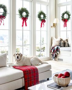 Home Decorated for Christmas My Home Decorated for Christmas. - Pink Peonies by Rach ParcellMy Home Decorated for Christmas. - Pink Peonies by Rach Parcell Noel Christmas, All Things Christmas, White Christmas, Christmas Wreath On Windows, Christmas History, Tartan Christmas, Christmas Lights, Christmas Cards, Hello Holidays