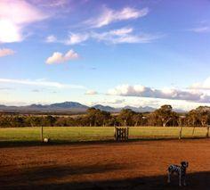 Vision Splendid Farm
