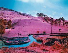 Résultats de recherche d'images pour «paysage rose»