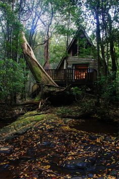 Yes, there is something about an A-Frame in the forest