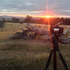 What are your top three favourite places in Canberra to photograph? Photo: Instagrammer jharrisonphotos #visitcanberra