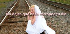 Seguro para bodas.com: Garantizamos el capital contratado para los servicios de vuestra boda ya que tenemos dos opciones.