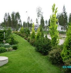 Golf Courses, Yard, Gardening, Dogs, Patio, Lawn And Garden, Pet Dogs, Doggies, Courtyards