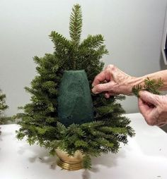 Christmas Special: DIY: Table Top Christmas Tree made from fresh evergreen clippings.