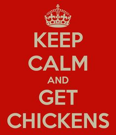 KEEP CALM AND GET CHICKENS