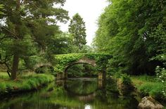 Architecture Beauty In Nature Bridge - Man Made Structure Built Structure Day Green Color Growth Irland Kilkenny Kilkenny, Ireland Nature No People Outdoors Plant Reflection River Scenics Sky Tranquility Tree Vacations Water