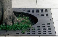Simple square tree grate protection.  Utilitarian Floors