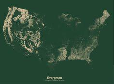 Minimal Maps by Michael Pecirno