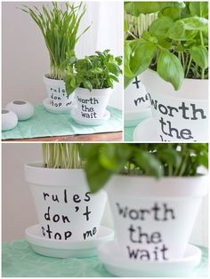 hamburgvoninnen_herbage pots and song quotes.  easy #diy in black and white :)