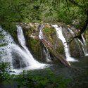 Beaver Falls on the Olympic Peninsula, block type waterfall | Olympic Peninsula Waterfall Trail