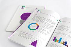 GAN Annual Report 2016/2017
