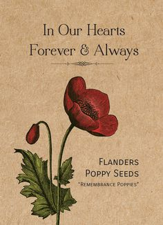 """Remembrance """"In Our Hearts..."""" Seed Favor"""