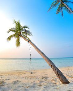 10 Essential Beach Reads for Summer 2021 | Miranda Schroeder Blog www.mirandaschroeder.com