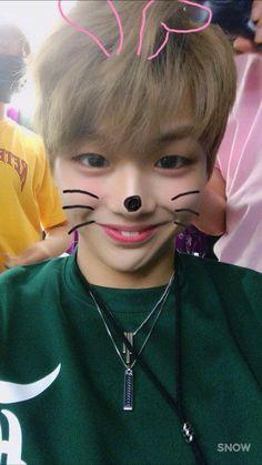 King Daniel♡ so cute Kang Daniel Produce 101, Got7, Jimin, Park Bo Gum, Jihyo Twice, Daniel K, Ha Sungwoon, Seong, 3 In One