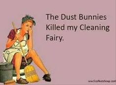 Image result for funny cleaning quotes