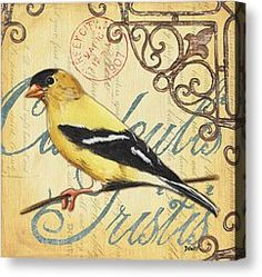 Pretty Bird 3 Canvas Print by Debbie DeWitt