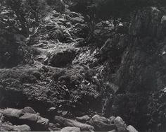 Edward Weston, Point Lobos (Rocks, Cliff, Light), 1944, Photograph