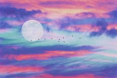 Gute Nacht ihr Lieben 💕🙏🏻💕 #Mond #zen #night #colours #birds #spirit #spiritual #spiritualthoughts #mind #gedanken #lebengeniessen #enjoythelittlethings #enjoylife #happiness #happinez @fotolia