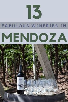 There are some incredible wineries in Mendoza, Argentina. Read this post to discover 13 amazing wineries and to get plenty of tips on how to fully enjoy your wine tasting experience in Mendoza | #argentina #wine via @clautavan