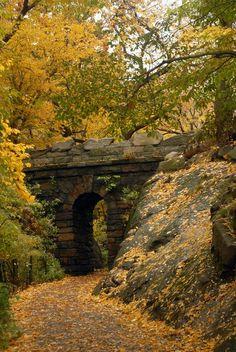 Autumn Arch, Central Park, New York City.