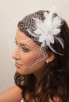 Beautiful Wedding Veil Hairstyle with Chic Bridcage -Serendipity