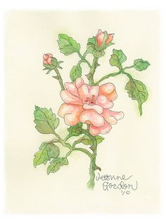 Old Fashioned Rose by Jeanne Gordon at Mouthstick Art