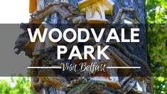Woodvale Park, Belfast - Belfast Attractions - Places To Visit In Northe. Belfast Attractions, Belfast City Centre, Visit Belfast, Belfast Northern Ireland, Travel Videos, Beautiful Gardens, Places To See, Greenery, Parks